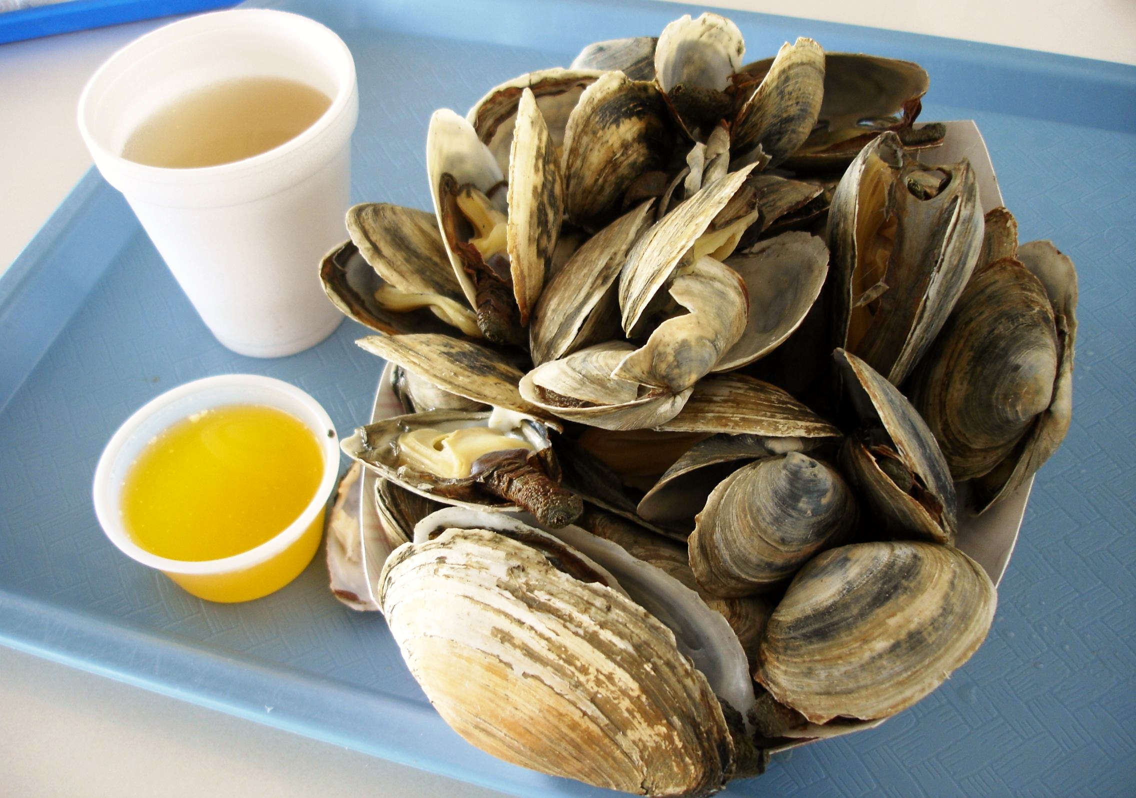 Steamers are local, not farmed. You can tell by the chipped edges and varying sizes. They also need a more thorough rinsing in the broth than their farmed cousins. We only wish the butter was really butter (we don't know for certain that it isn't the real stuff but to our tongues there was no butter flavor whatsoever).