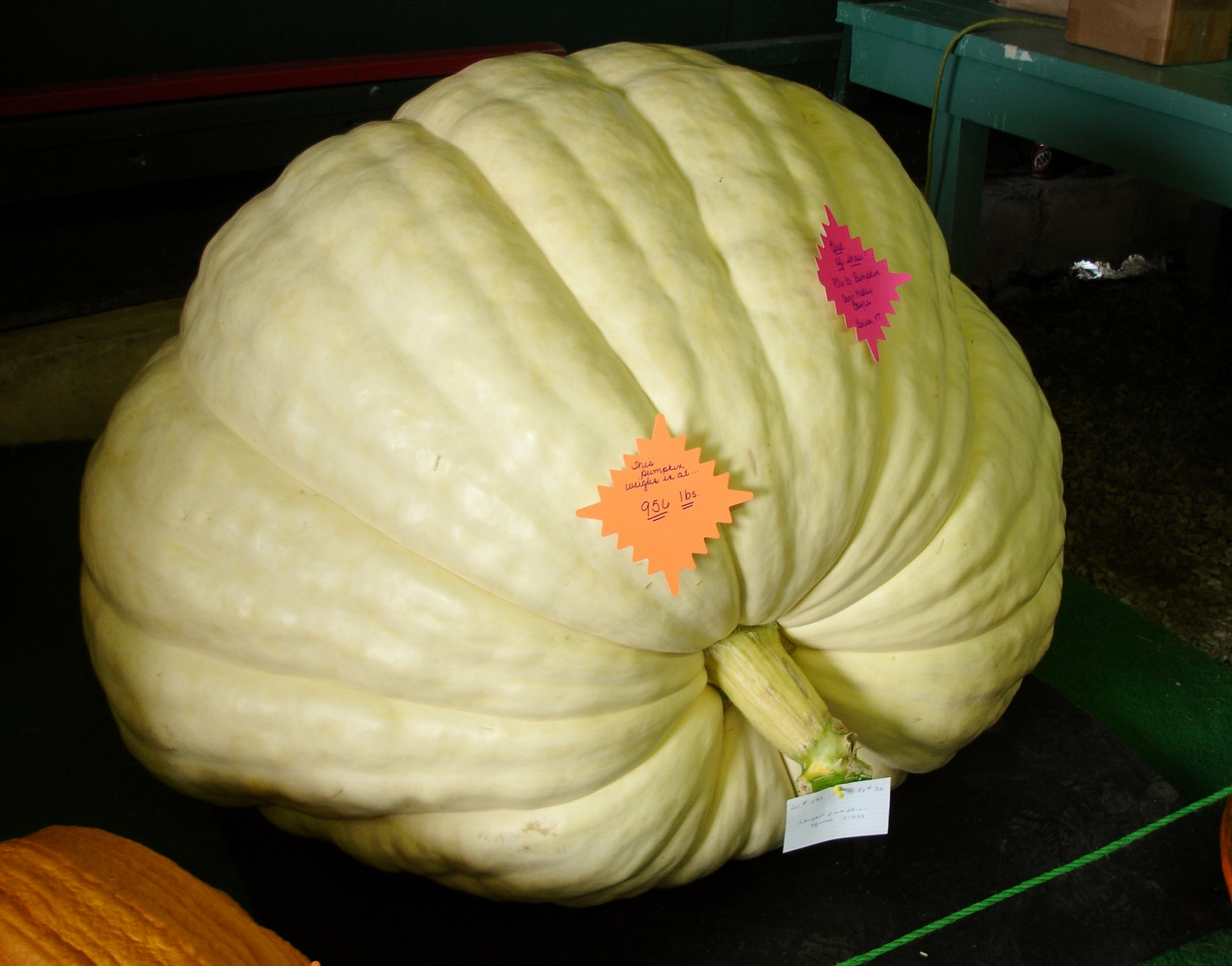 The giant pumpkins, homemade jarred pickled vegetables, quilting competitions... it's all here,