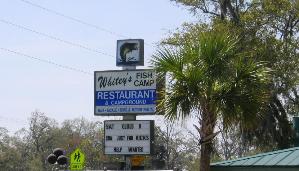Whitey's is located by the side of Swimming Pen Creek, off Doctors Lake, which is off of the St. John's river.