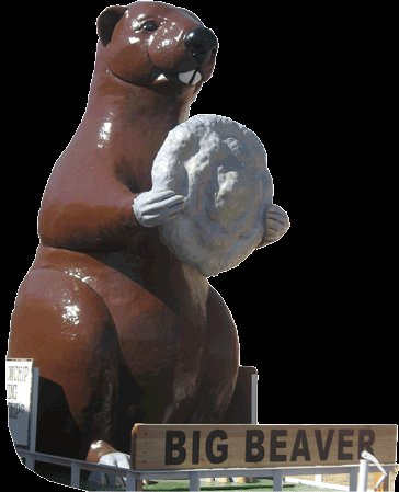The town mascot, Big Beaver - yes, he's holding a cow chip!