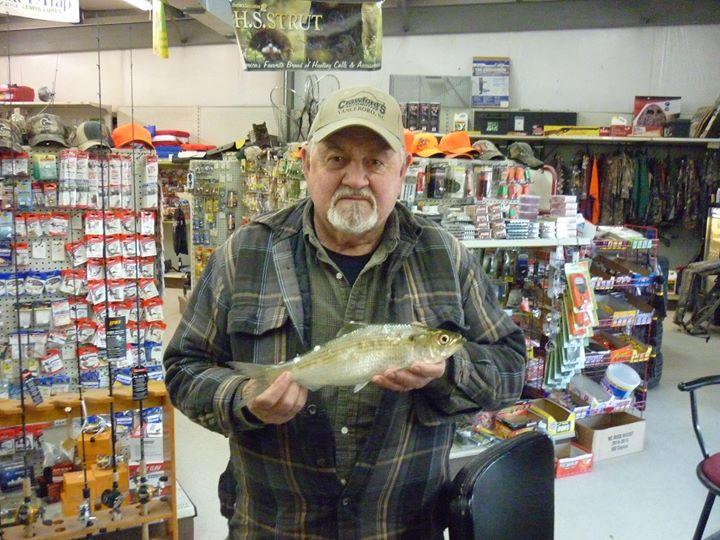 Fish, Grifton Shad Festival, Grifton, NC