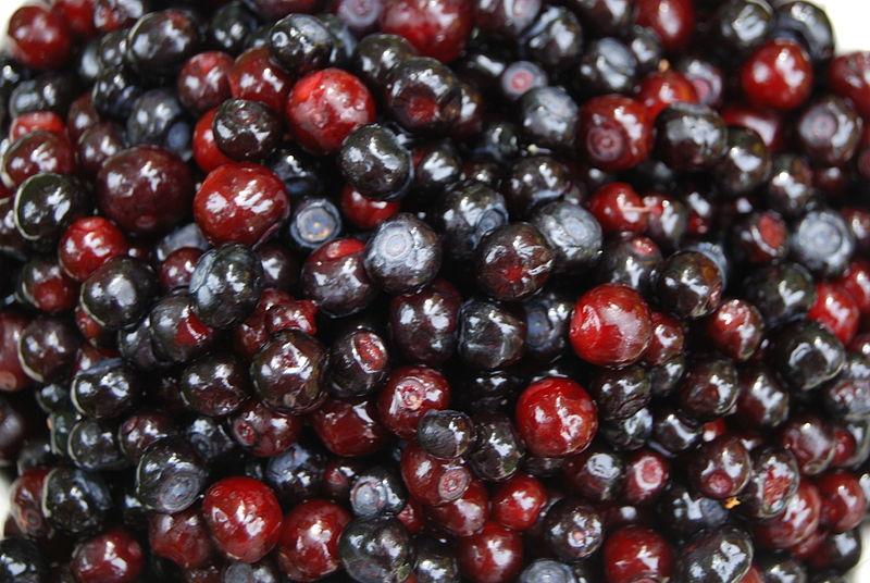 Huckleberries, Huckleberry Festival, Jay, OK