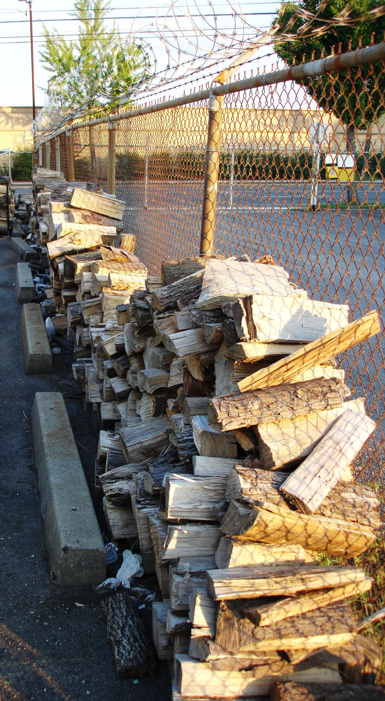 You can survey Lucy's wood pile as you exit your car.