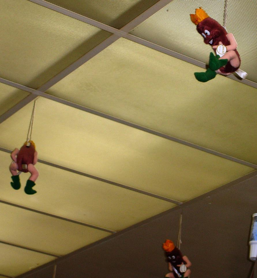There's something a little creepy about these hot dog creatures hanging from the ceiling.