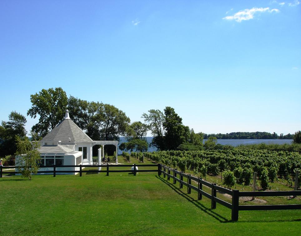 Pass through the tasting room and walk towards the water, and the restaurant.