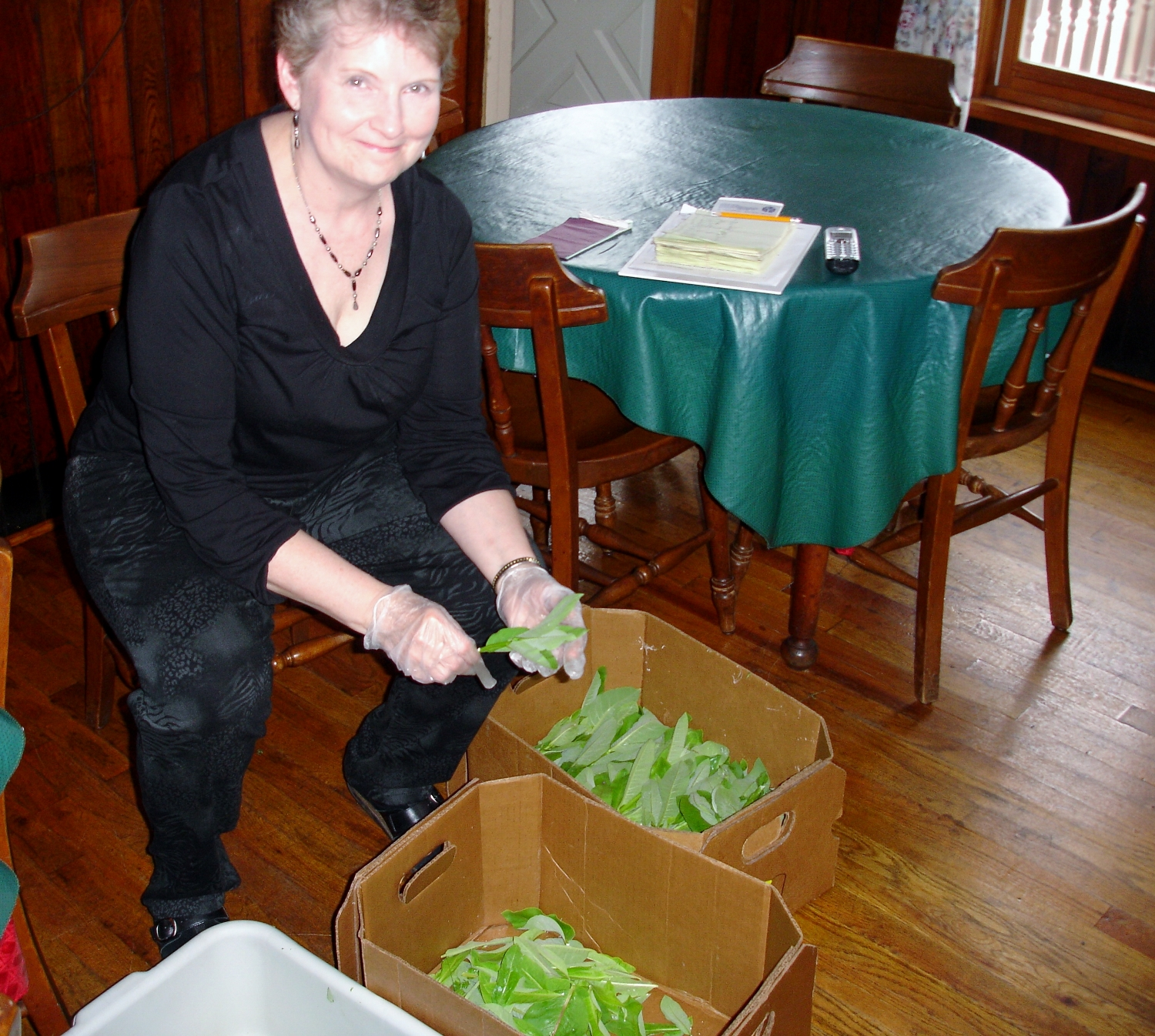 Tammie preps some just-picked milkweed for Sunday lunch.